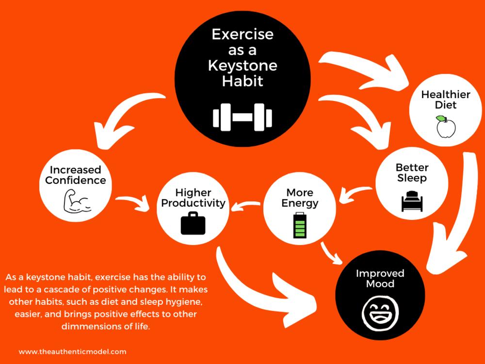 Exercise as a Keystone Habit