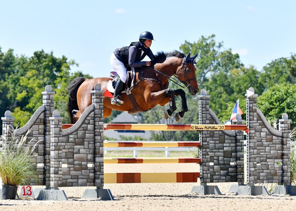 Ivaro N, ridden by Lisa Goldman-Smolen, received the Award of  Distinction from the judges in the 7-year-old division.  Photo by Shawn  McMillen Photography