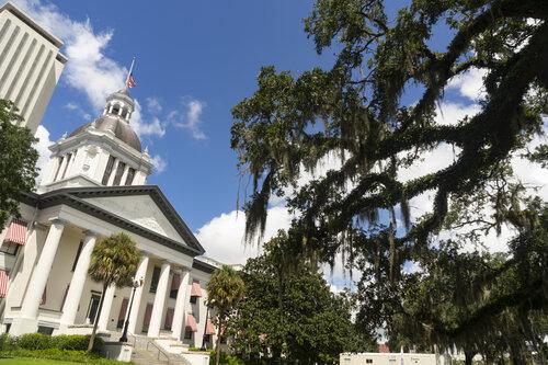 the-florida-statehouse-with-blue-skies-JNLVZBR.jpg