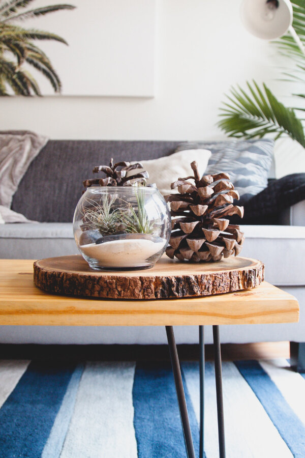 Decorating With Natural Materials What You Already Have Diy Budget Home Design Greenhouse Studio