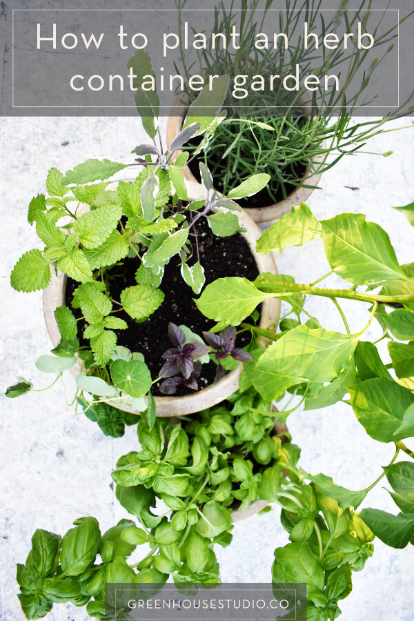 How To Plant An Herb Container Garden, Herb Garden Patio