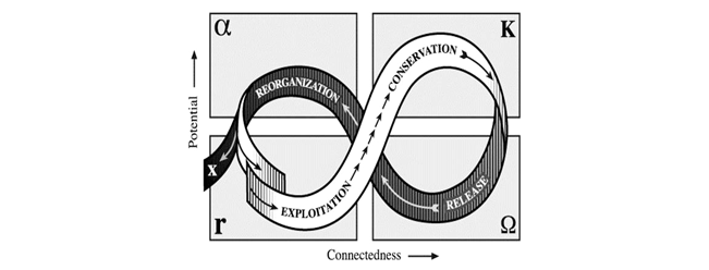 MeganBest-adaptive-resilience.jpg