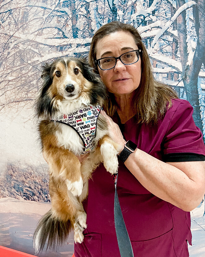 Our Staff 4 Paws Animal Hospital