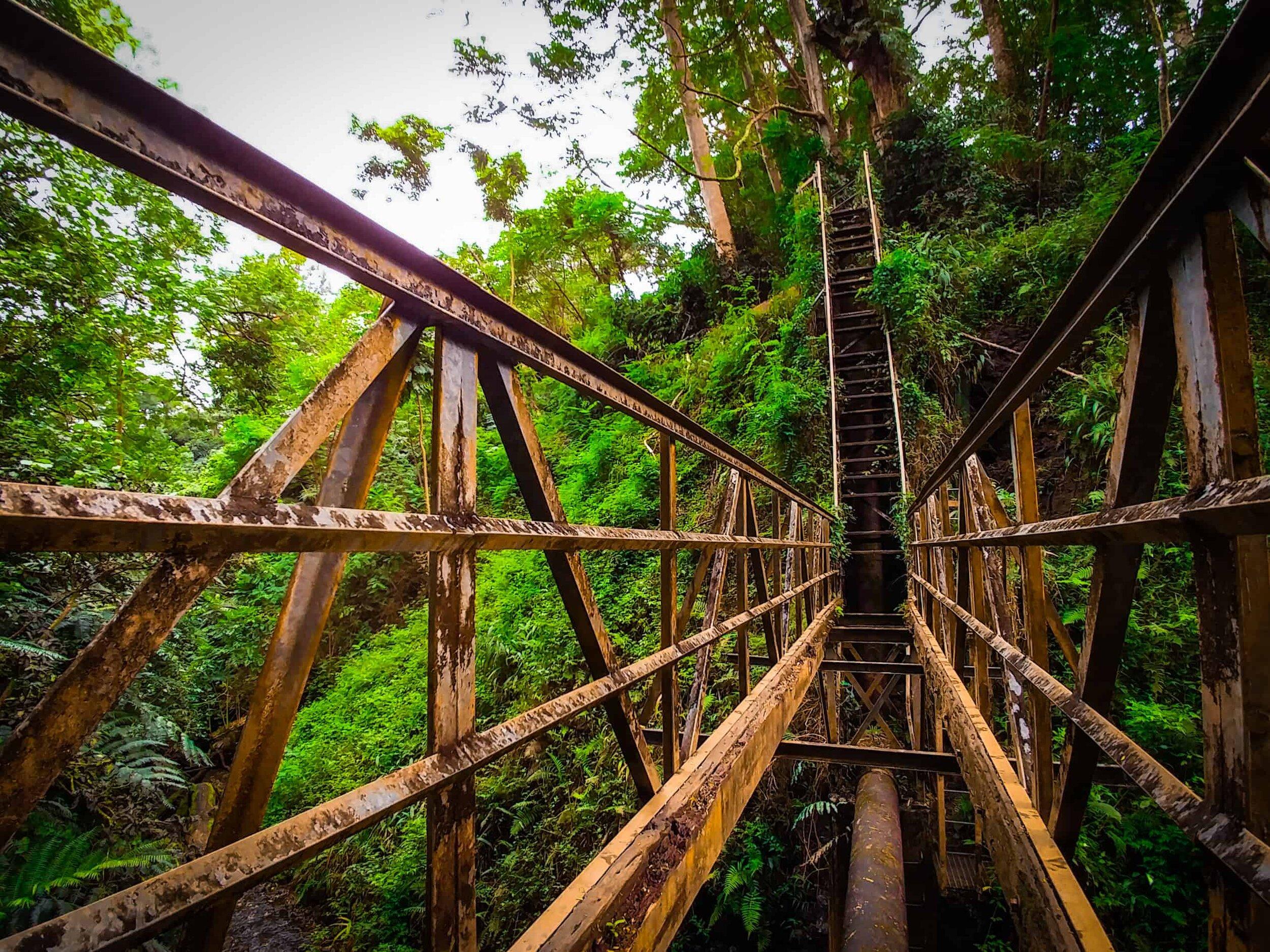 hidden bridge of Maunawili Falls