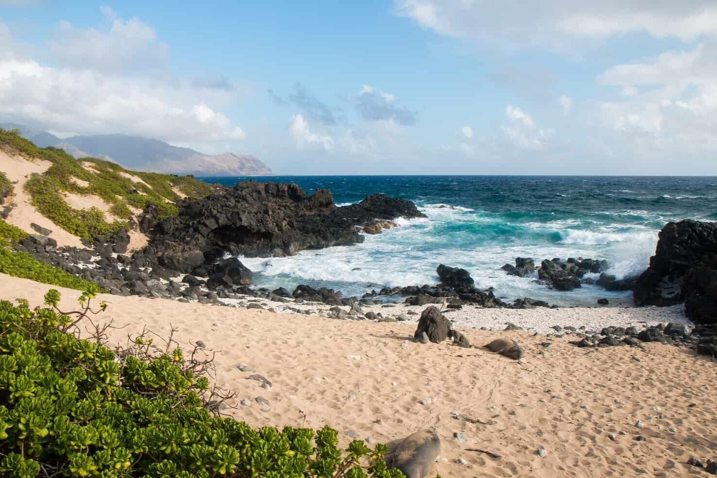 hawaii-elopement-beach-kaena-point-hike