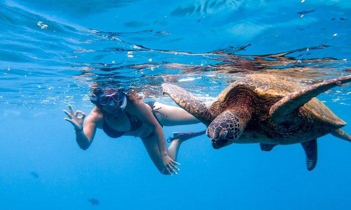 Oahu Hawaii Elopement snorkling