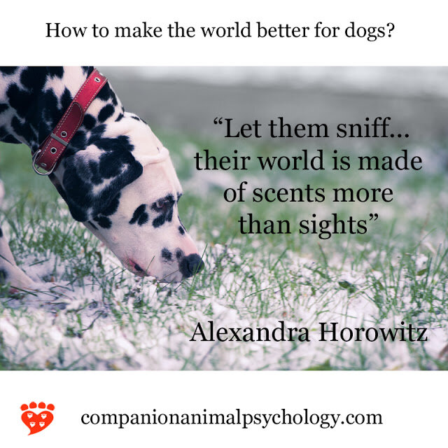 Let your dog sniff! (Companion Animal Psychology)