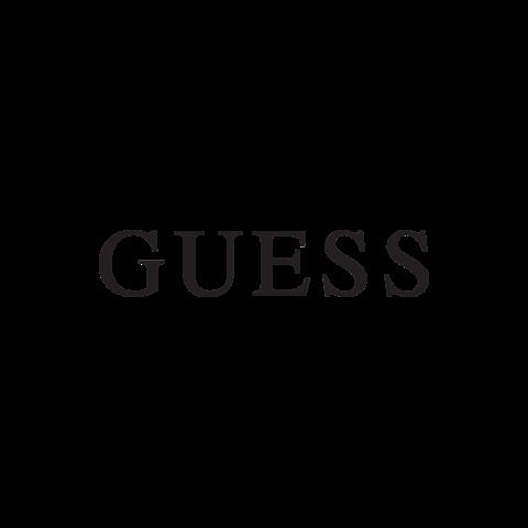 猜测 -  logo_transp300_1.png.