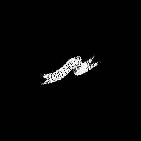 奇数molly-logo_transp267.png
