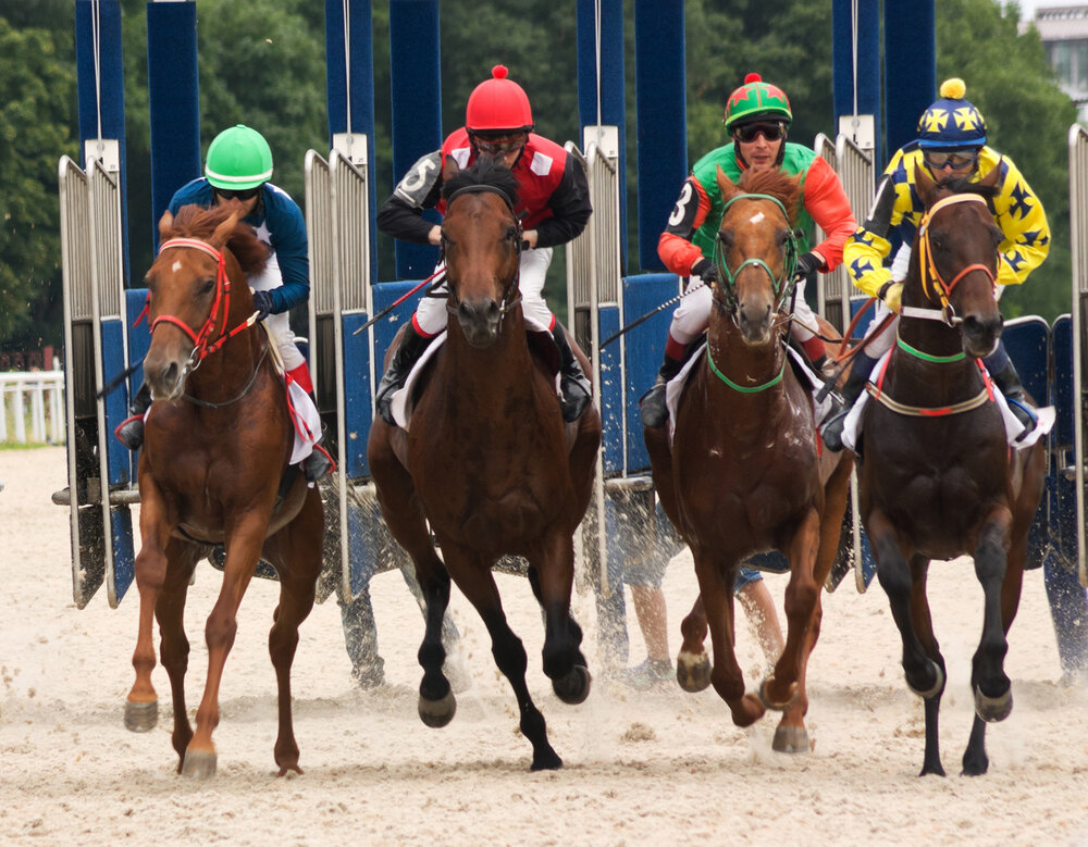 Horse racing tips for betting in ruidouso 2021 afl season betting tips