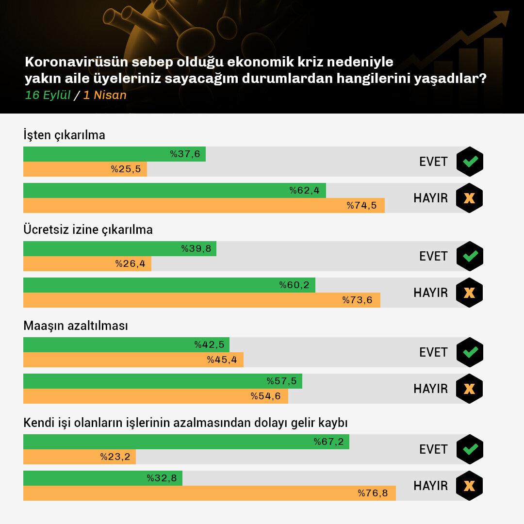 Koronavirüsün Hanehalkına Etkileri II-Data.jpg