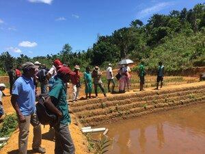Inspiserer nye dammer for oppdrett av Tilapia