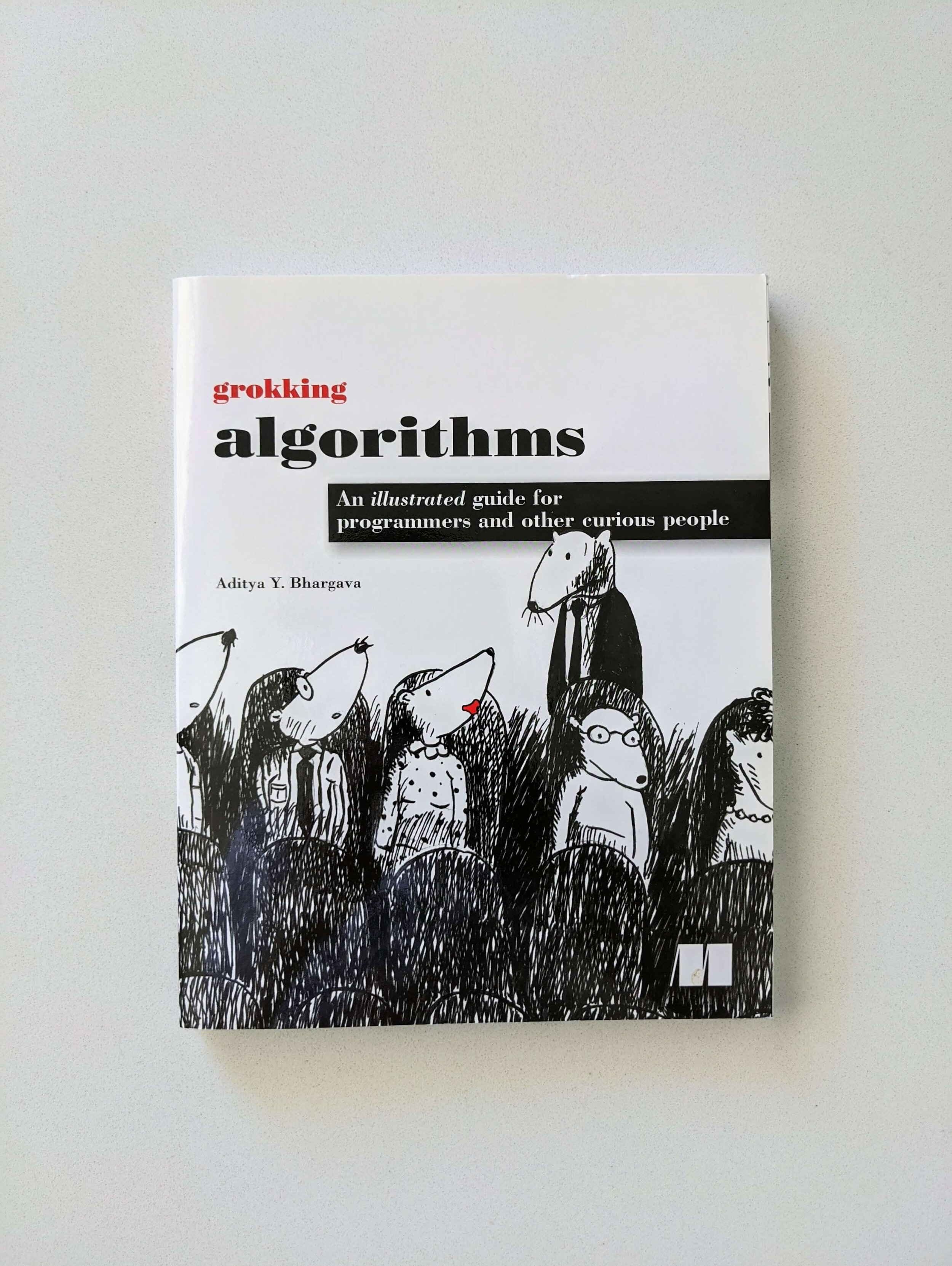 grokking-algorithms