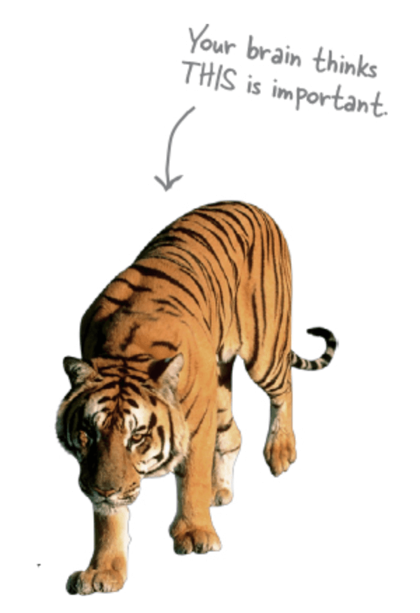 The quote below is next to this image of a tiger. Images are important for our relational thinking.
