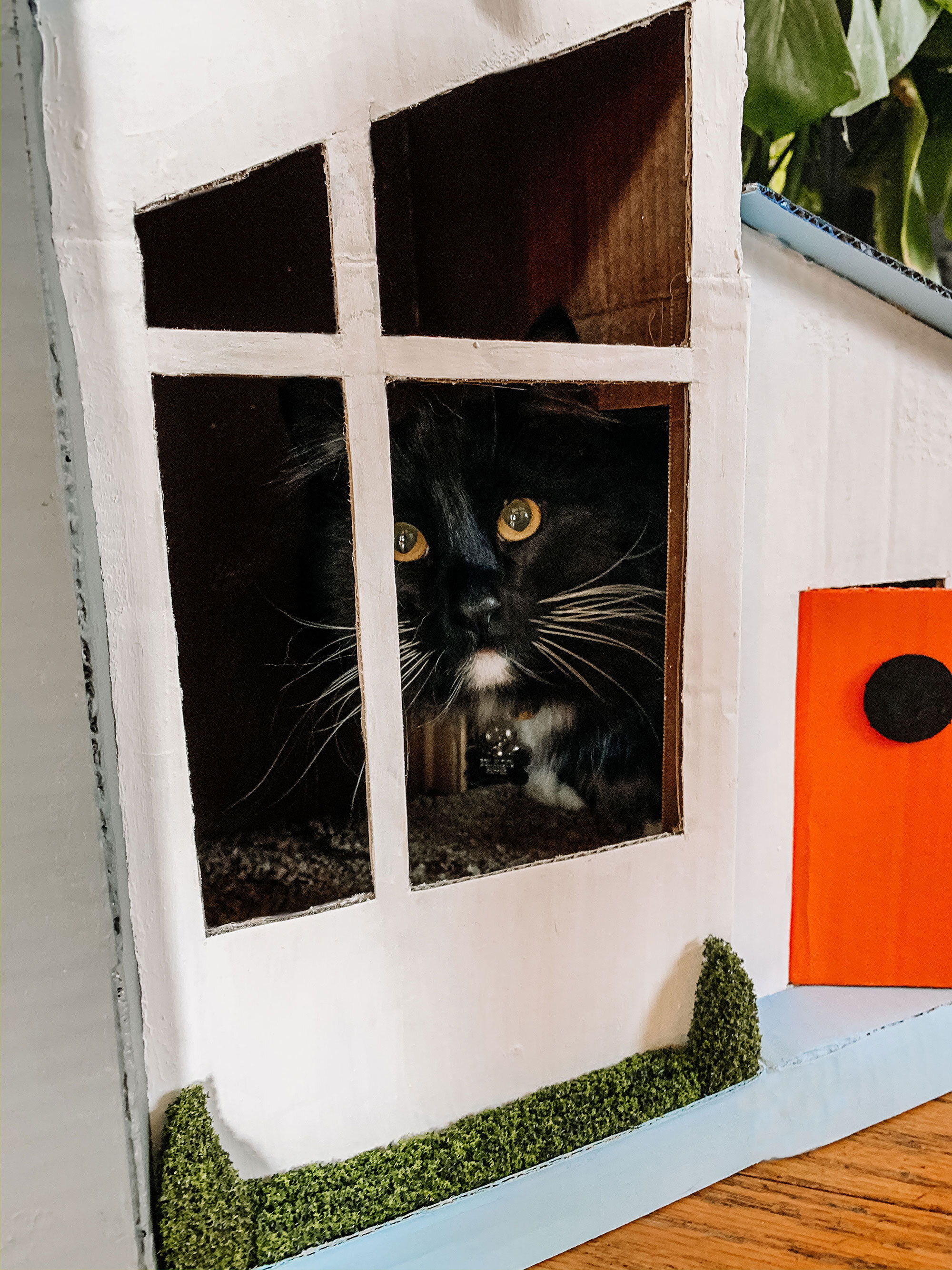 How To Make A Cardboard Cat House The Green Mad House