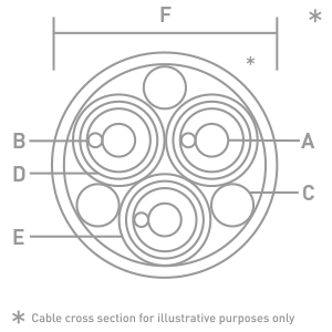 Ascension-CrossSection-300px.4ab1524e200c70f0838101aee47f81208609.png