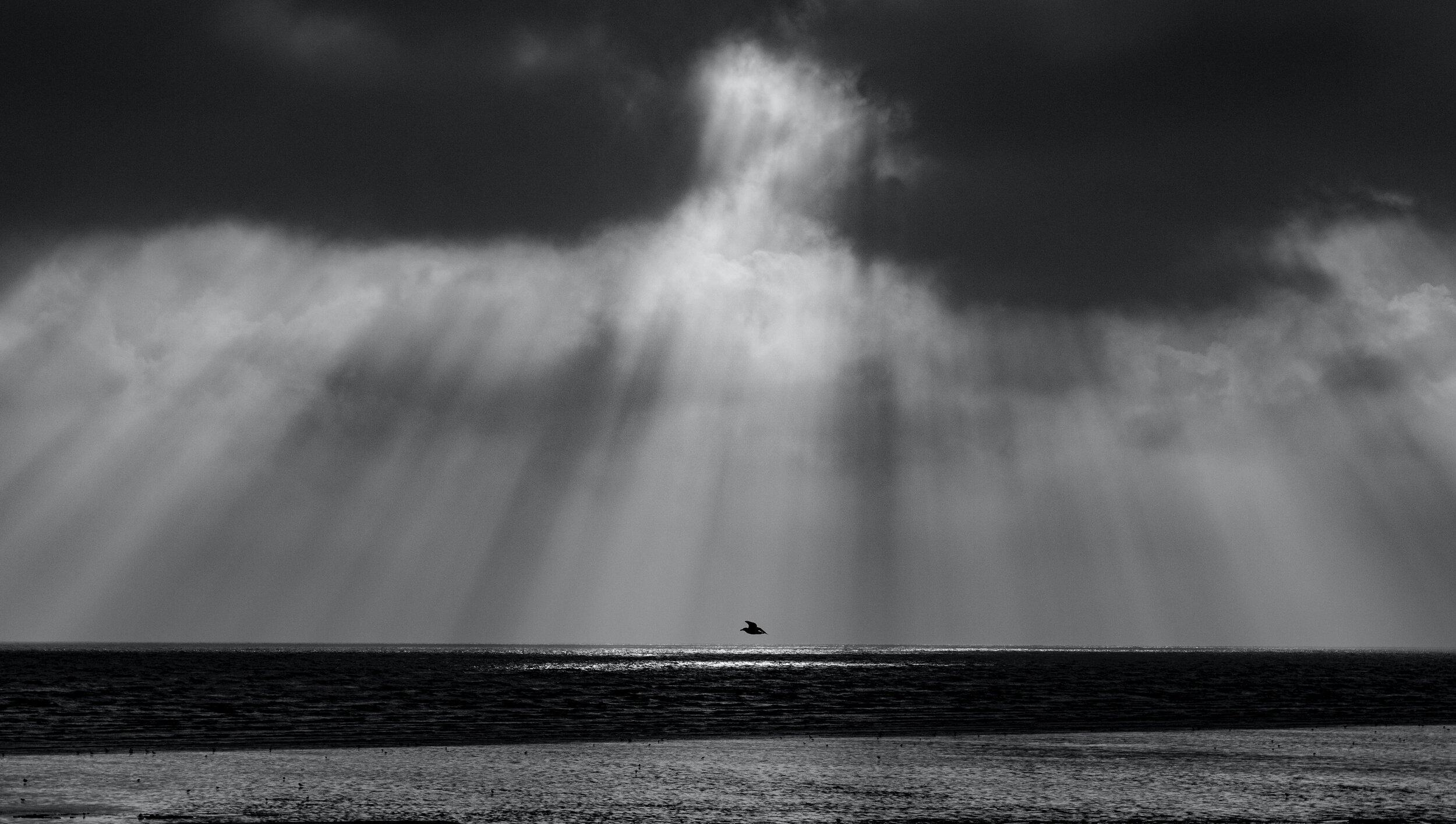 Photo by  Zoltan Tasi  on  Unsplash