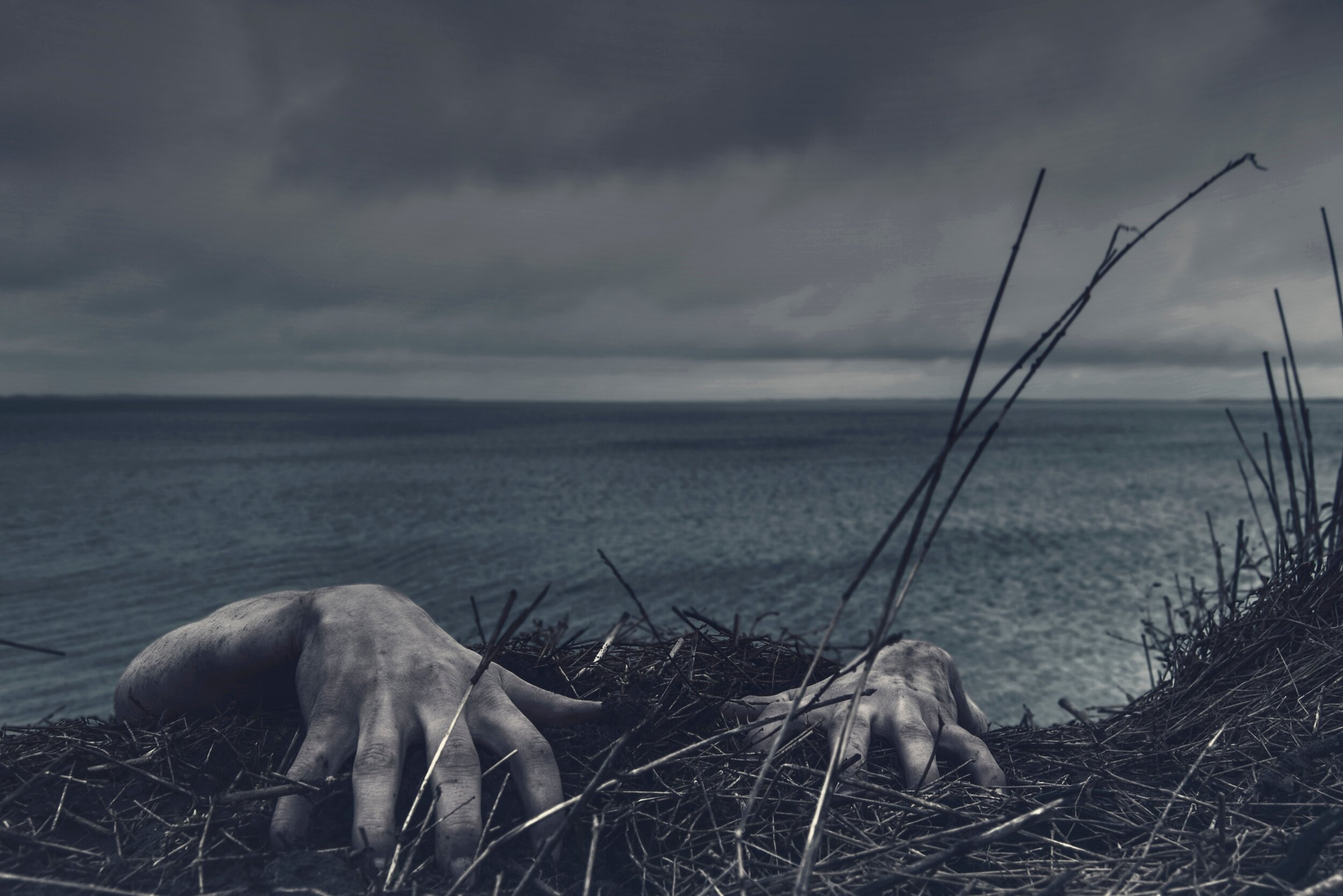 Photo by  Daniel Jensen  on  Unsplash