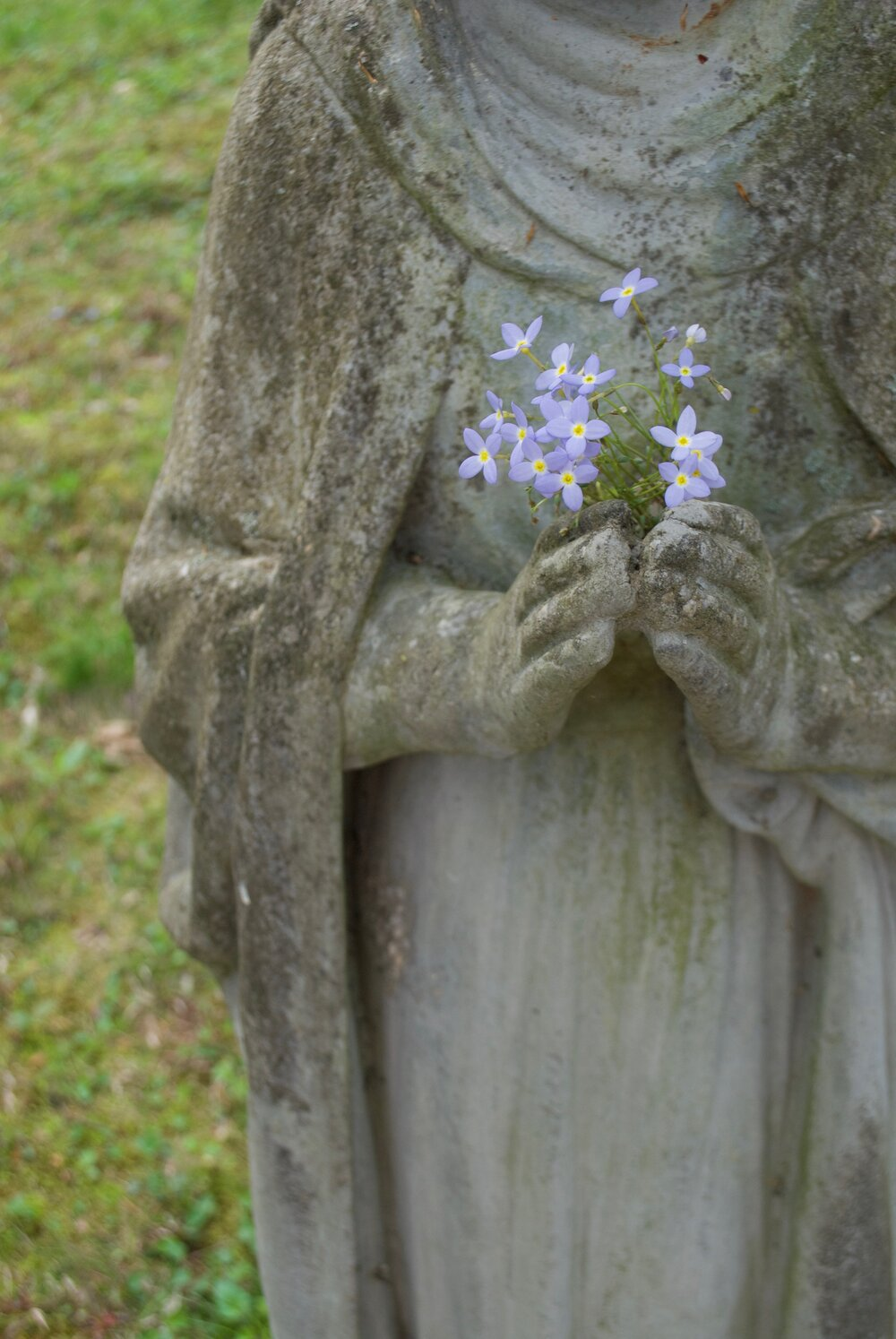 A detail of a cement sculpture, a headstone? The sculpture is close to the camera and its head and feet are beyond the edge of the frame. Its hands hover around a bunch of tiny purple flowers and the surrounding cement is faintly streaked green. The flowers and grass are contrasted by the weathered sculpture. Stone and stems are both natural objects, as are the rare earth minerals that power Tess's camera. Different scales of time are well represented here.