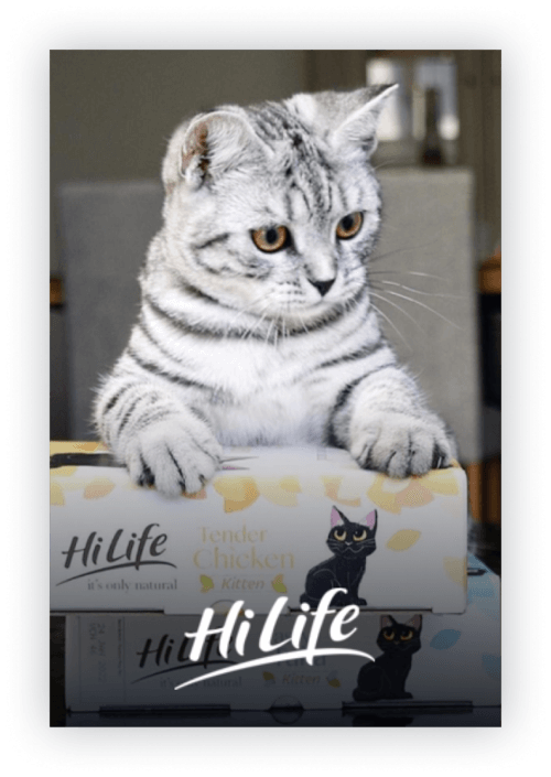 HiLife Pets    A stunning D2C site for the UK's leading pet brand.
