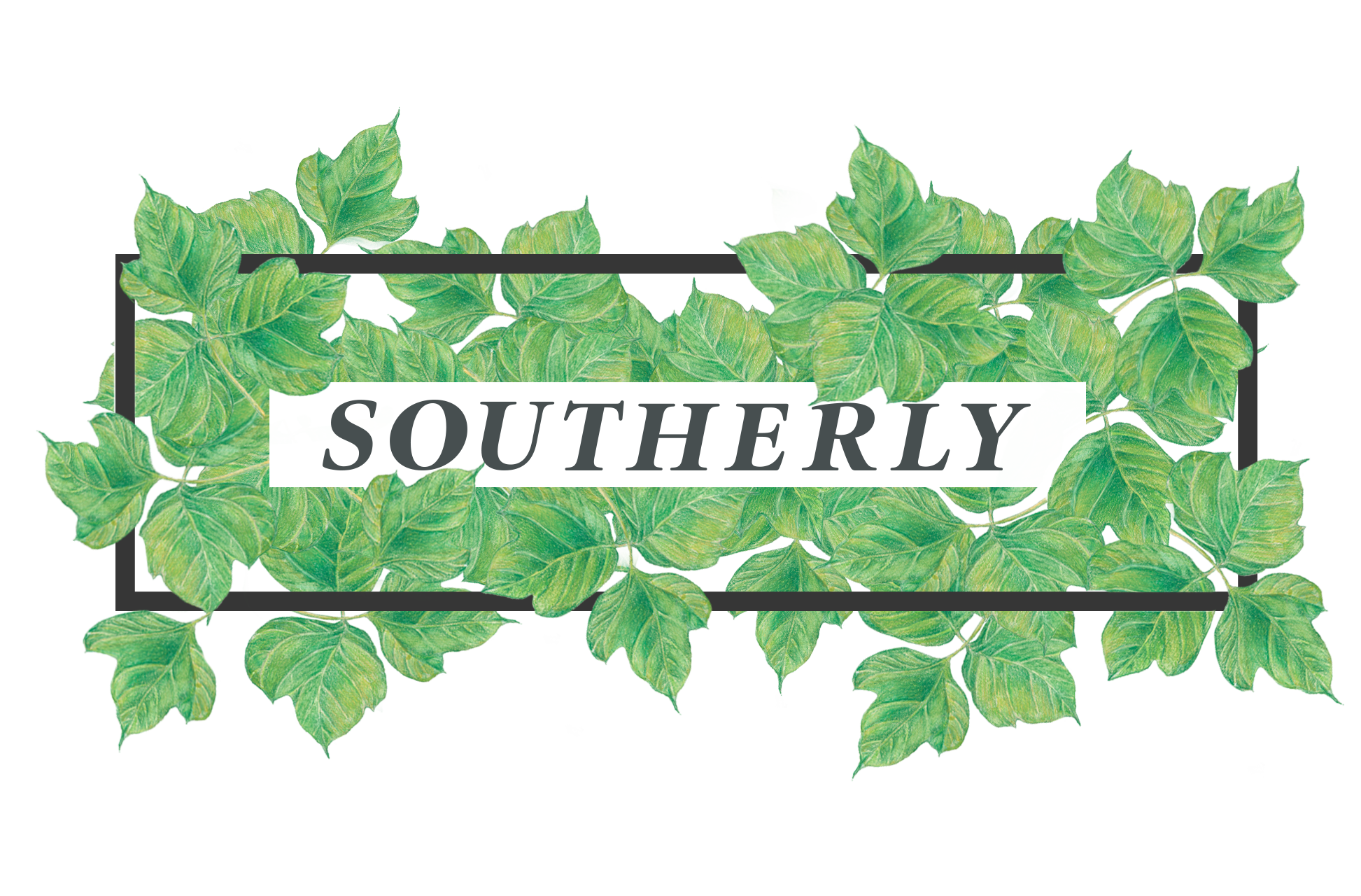 SOUTHERLY.png