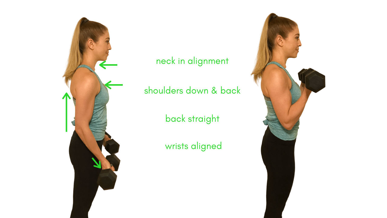 Bicep curl arm exercise proper form