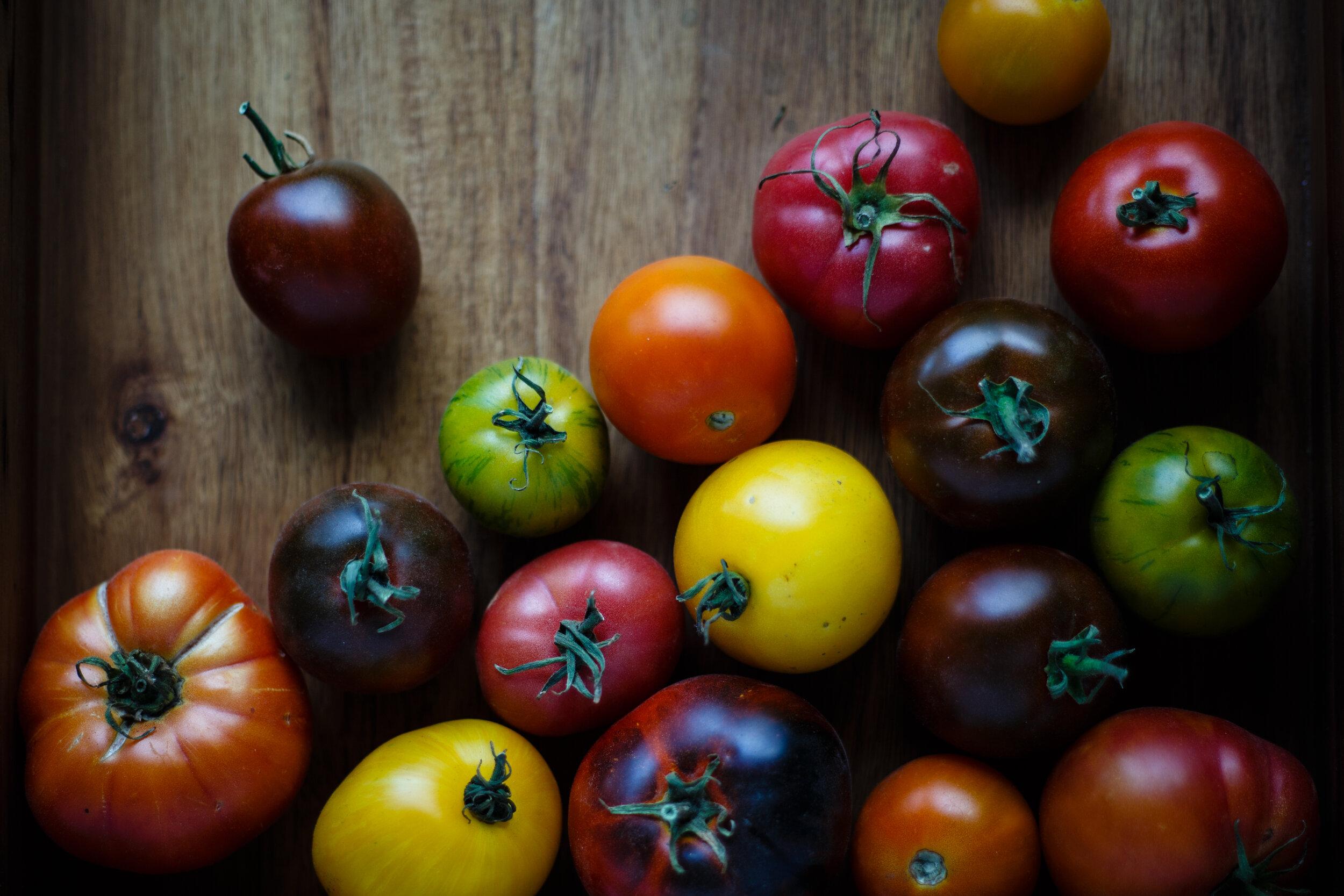 Heirloom tomato varietals for Checca