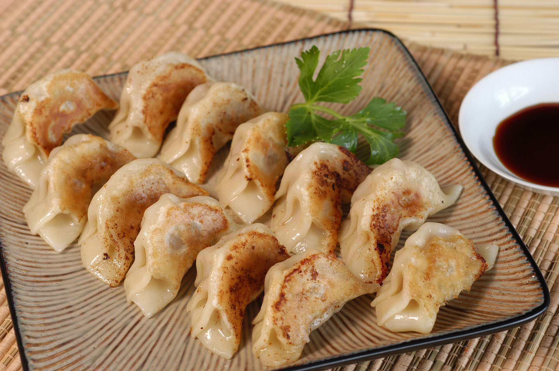 Japanese street food gyoza dumpling.