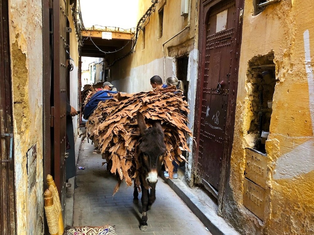 Moroccan-Street-Food-scene.jpeg