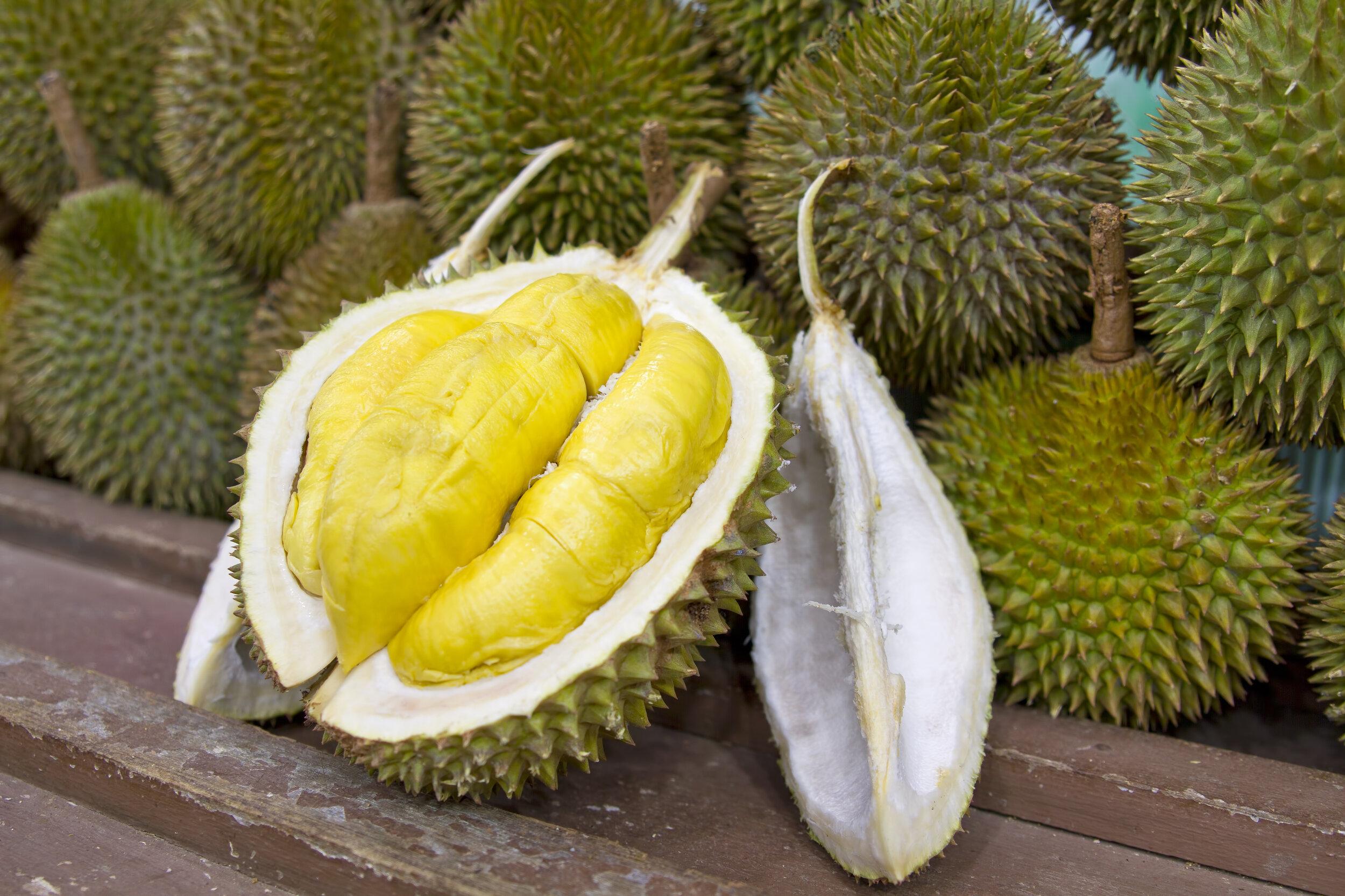 Infamous Thai fruit—Durian