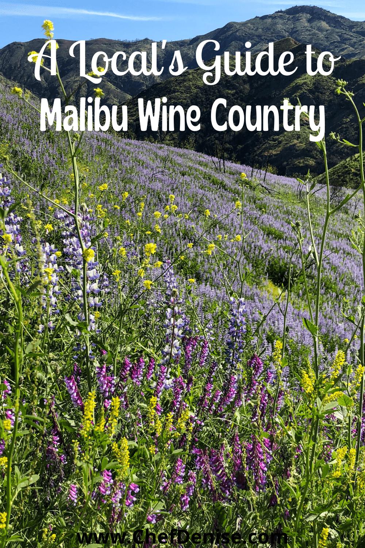Pin for wineries Malibu wine