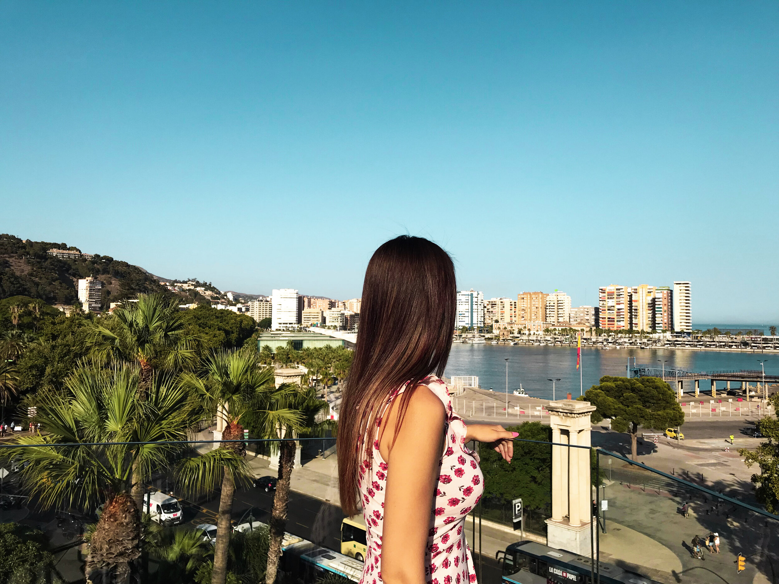 Author of Guide to Malaga Food & Restaurants