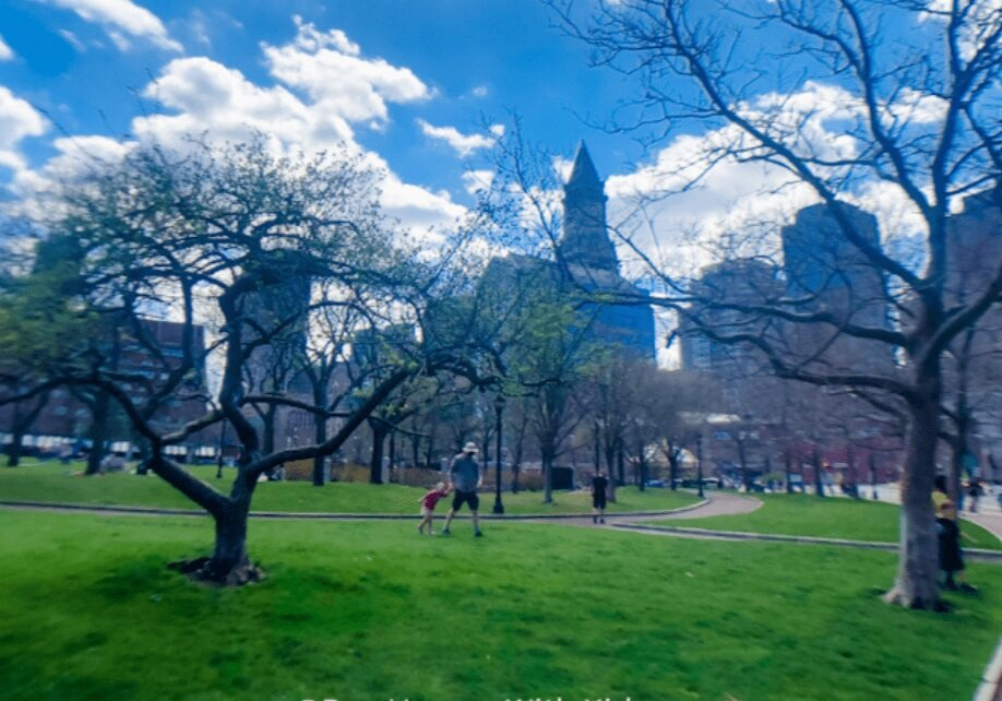 Green space for a Boston picnic