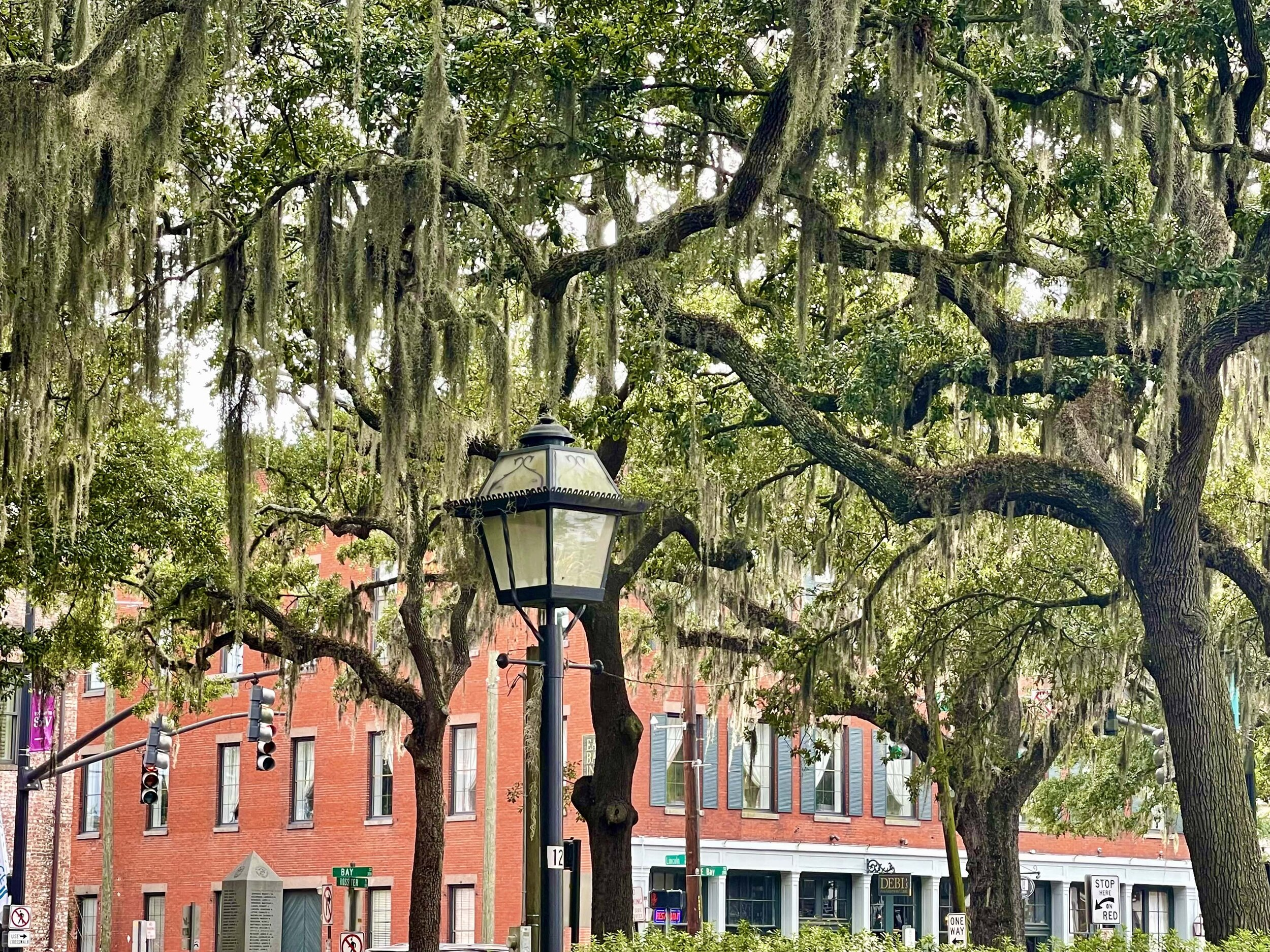 The famous Spanish moss drapes in front of a Savannah boutique hotel.