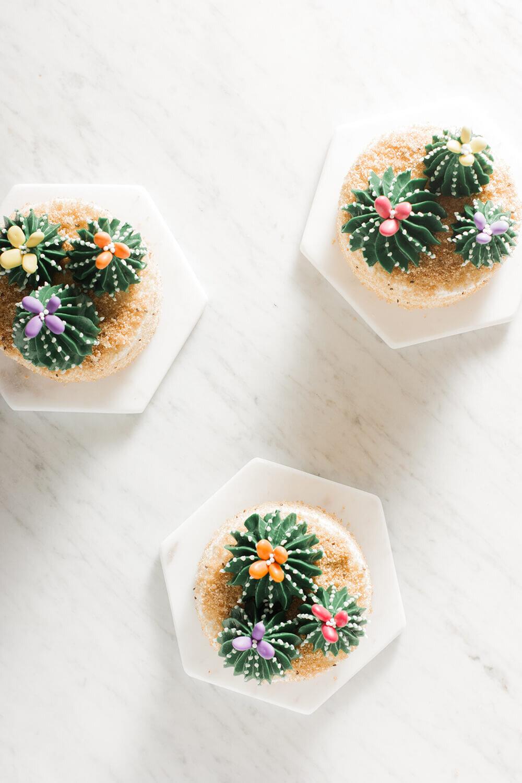 Cactus Mini Cakes Whisk Wander