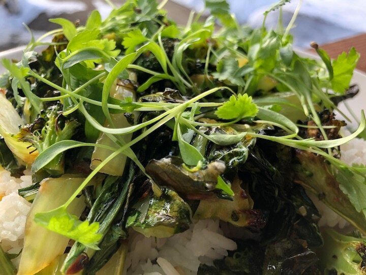 Grilled boy choy and broccoli with ginger, garlic and 41North cilantro micro greens.