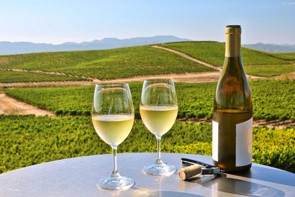 wineNapa.jpg