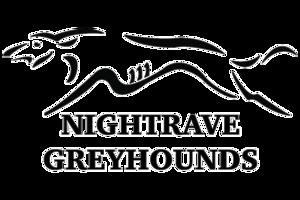 nightrave-logo.png