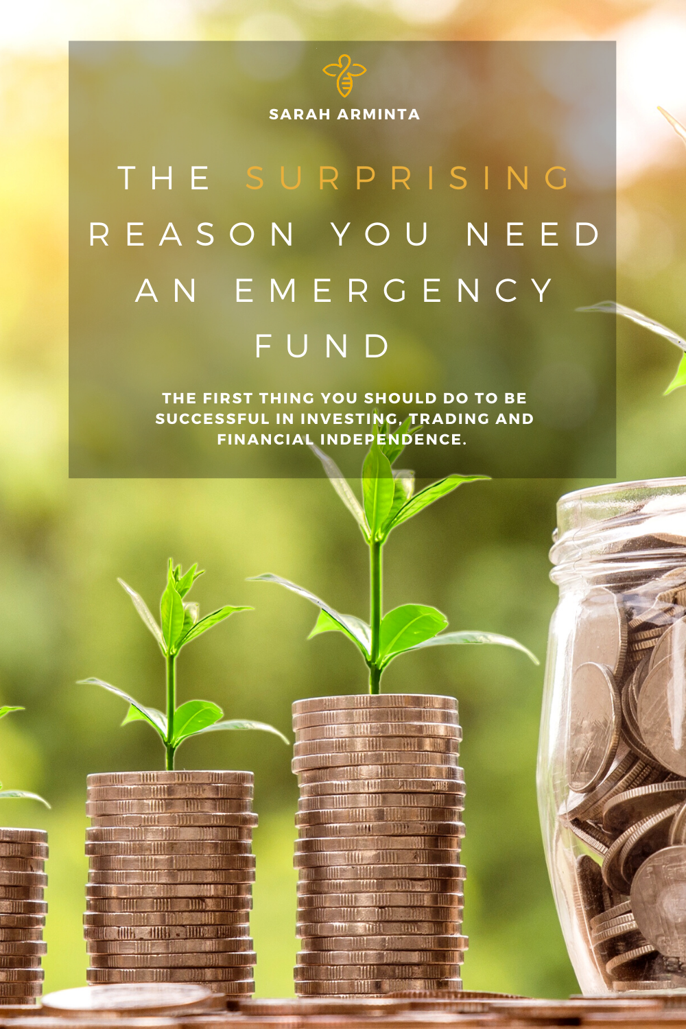 Surprising Reason You Need an Emergency Fund.png
