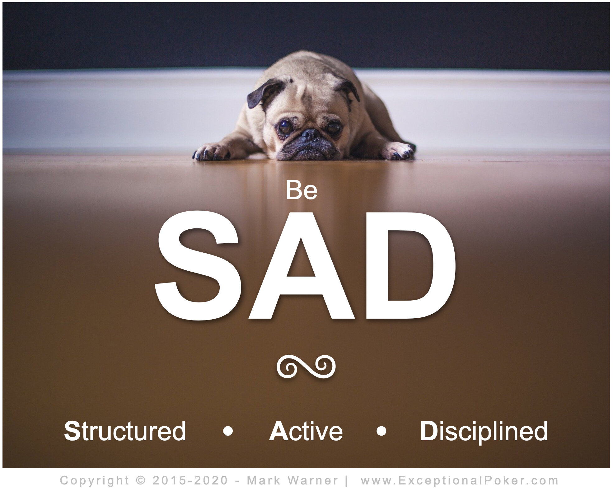 SAD - Structured Active Disciplined.jpg