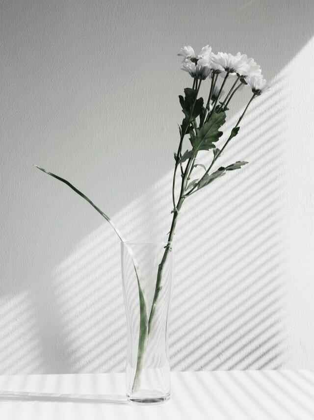 minimalray-minimalism-minimalist-aesthetic-style-light.jpg