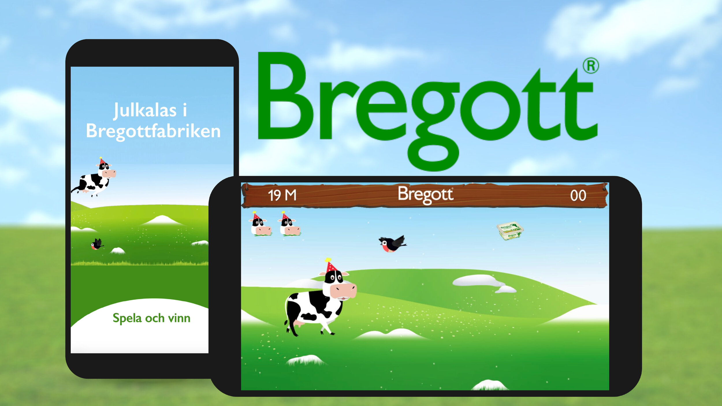 BREGOTT_CASE_site.jpg