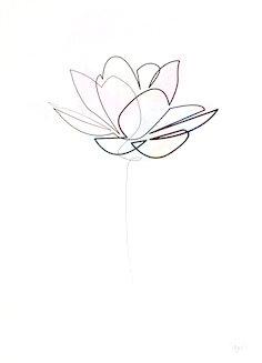 dibujo flor de loto minimalista