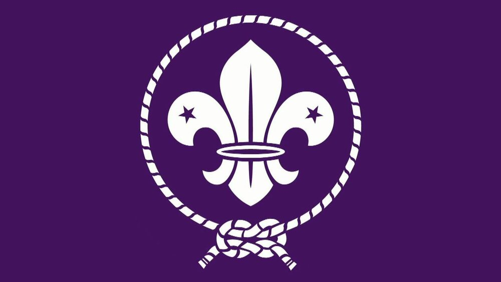 flor de lis scout