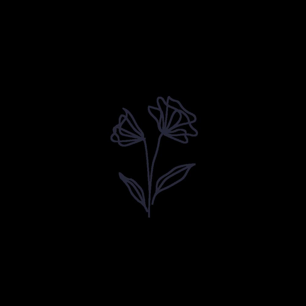 significado espirtitual de la rosa