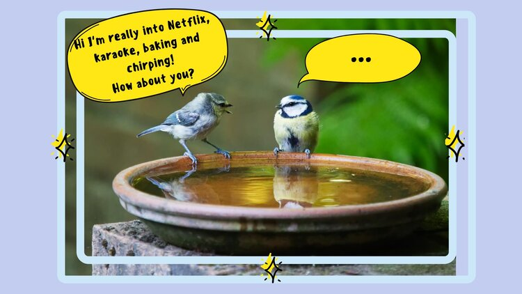 """Two birds perched on the rim of a water fountain. Over the one on the left is a yellow speech bubble saying """"Hi I'm really into Netflix, karaoke, baking and chirping! How about you?"""" Over the bird on the right is another yellow speech bubble with only three dots."""