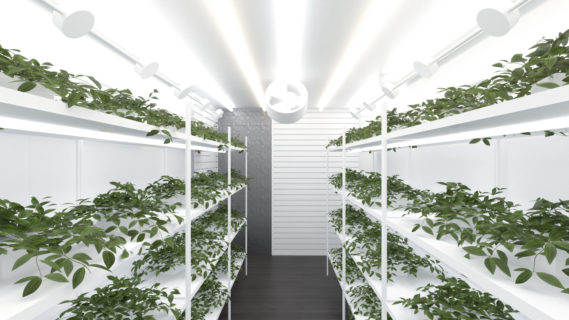 Grow Container View 2 Edit (1).jpg