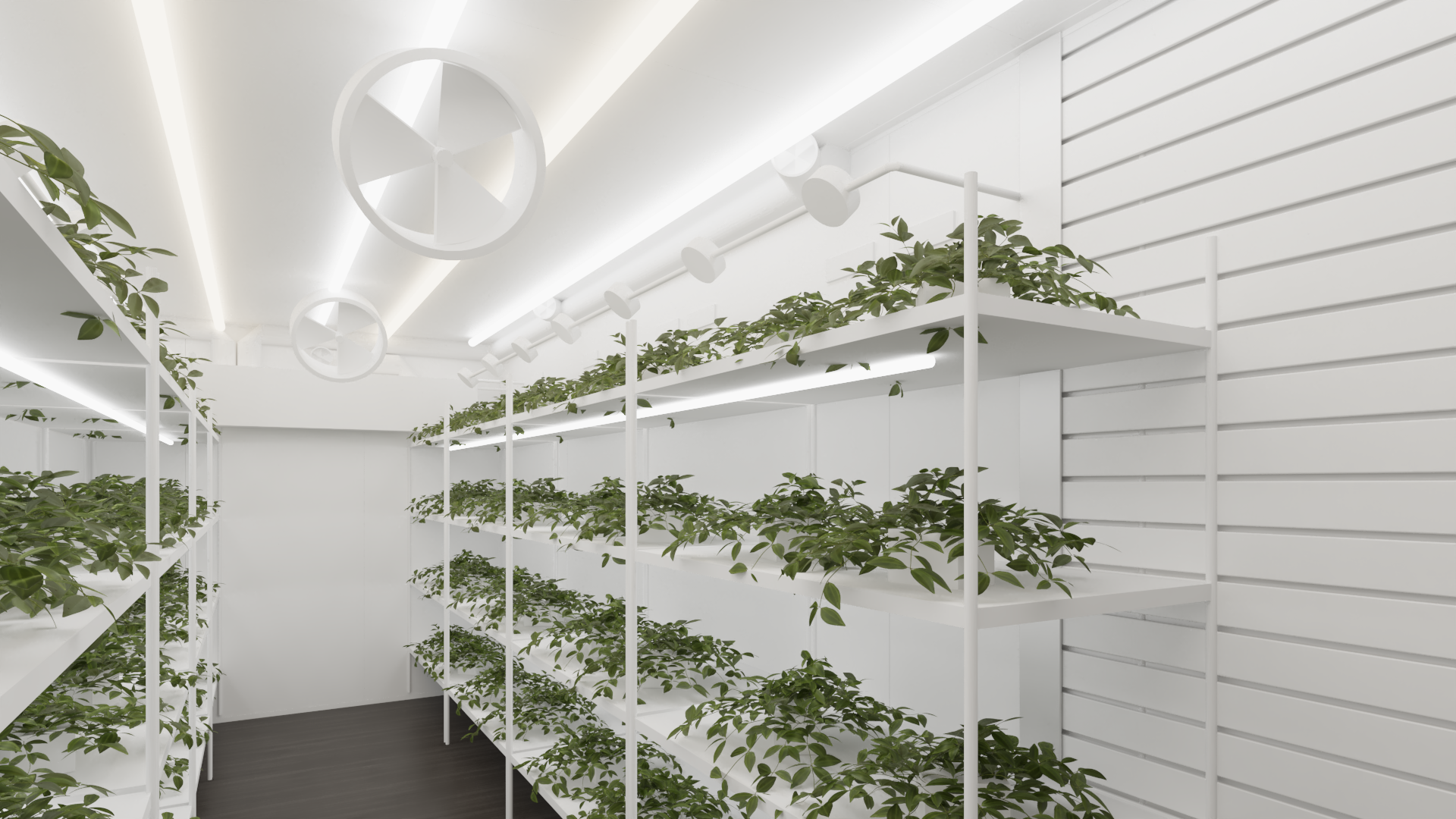 Grow Container View 4.Denoiser (1).png