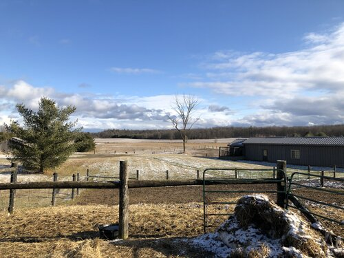 Breezy Ridge Farms in Georgina, Ontario is just one of the Canadian wool growers.