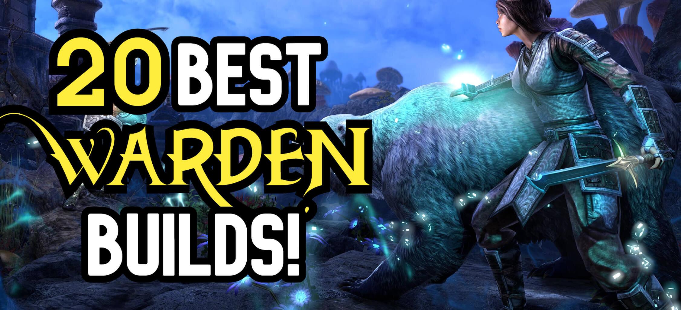 20-best-warden-builds (1).jpg